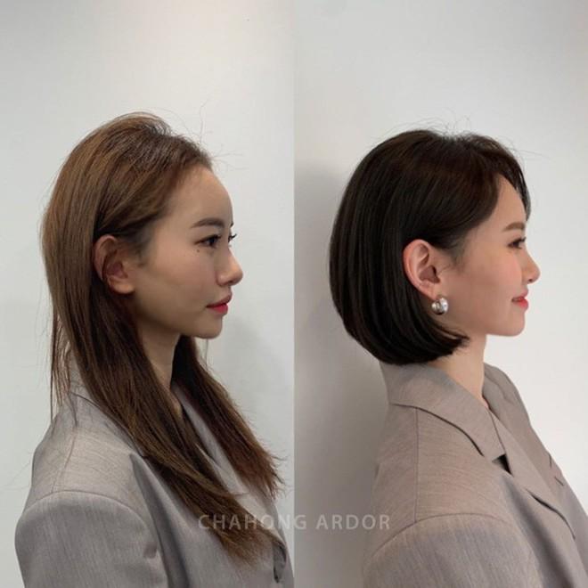 Chọn đúng kiểu tóc thì bạn mới đi được một nửa chặng đường, 50% còn lại phụ thuộc vào màu nhuộm - ảnh 3