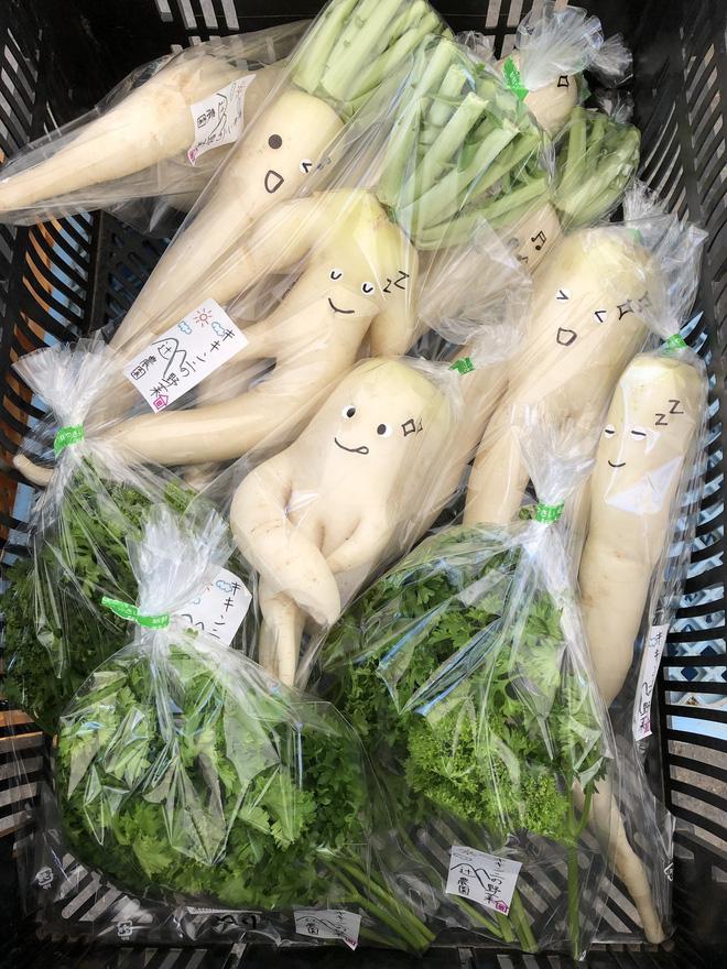 Trước nguy cơ bị vứt bỏ, loạt củ cải trắng xấu xí đã được nông dân Nhật Bản giải cứu nhờ bao bì cực thú vị - ảnh 3
