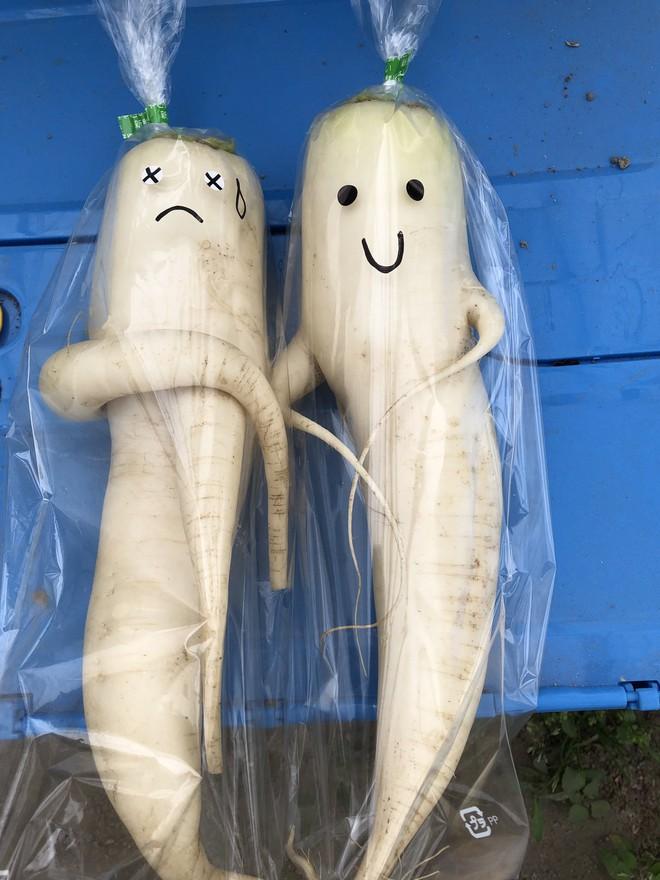 Trước nguy cơ bị vứt bỏ, loạt củ cải trắng xấu xí đã được nông dân Nhật Bản giải cứu nhờ bao bì cực thú vị - ảnh 5