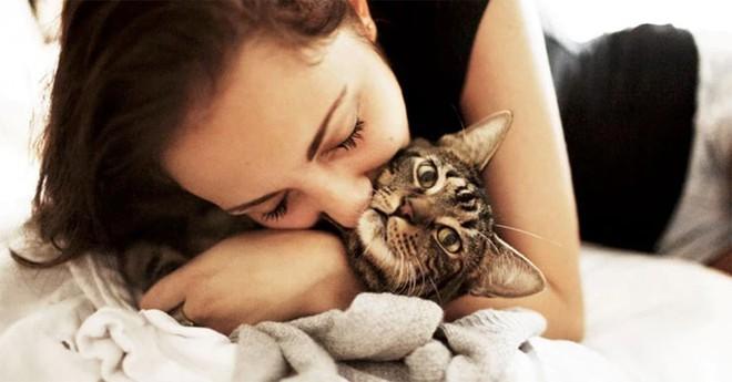 Yêu mèo đến điên dại mà ở gần là ngứa hết cả người? Bi kịch của các sen nay sắp chấm dứt rồi - ảnh 4