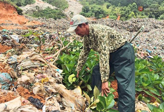 Cận cảnh núi rác ngàn tấn đổ ập xuống ruộng vườn ở Đà Lạt - ảnh 7