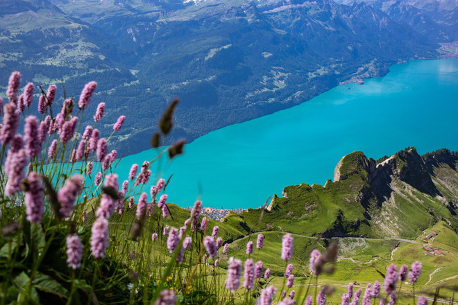 Đoạn clip quay vội tại Thụy Sĩ hot rần rần với gần 3 triệu view, xem xong cứ ngẩn ngơ vì không biết đây là mơ hay thật - ảnh 5