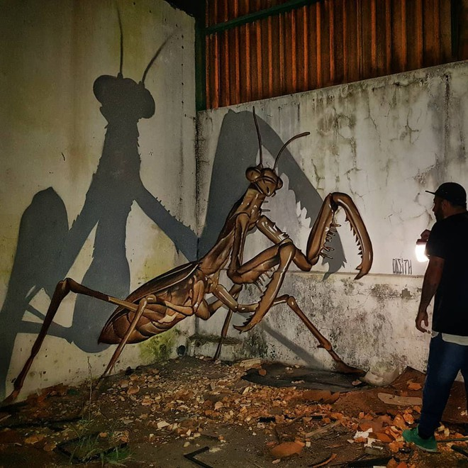 Những bức tường vô hồn hóa tuyệt tác qua đôi tay tài hoa của người nghệ sĩ khiến người xem trầm trồ - ảnh 5
