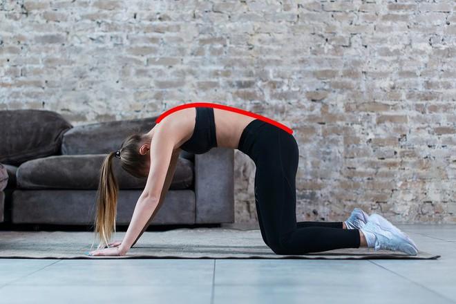 8 bài tập cải thiện vóc dáng, ngăn chặn tình trạng vẹo cột sống và cải thiện chứng đau cột sống hiệu quả - ảnh 3