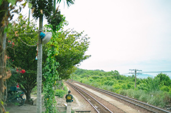 """Hot nhất Đà Nẵng hiện tại chính là """"cổng trời"""" mới toanh dưới chân đèo Hải Vân, nơi có đoàn tàu qua núi đẹp hệt trong phim - ảnh 26"""