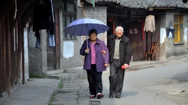 Bi kịch xã hội hiện đại Trung Quốc: Cha mẹ về già bị con cái bỏ rơi, sống cô quạnh, không một lời hỏi thăm, chết không ai biết - ảnh 4