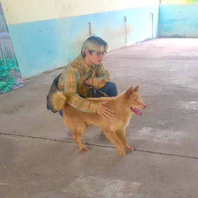Chê cún thuần Việt thiên tính tự nhiên cao, NSX Cậu Vàng lại bỏ qua chú chó Bắc Hà đáng yêu này? - Ảnh 2.