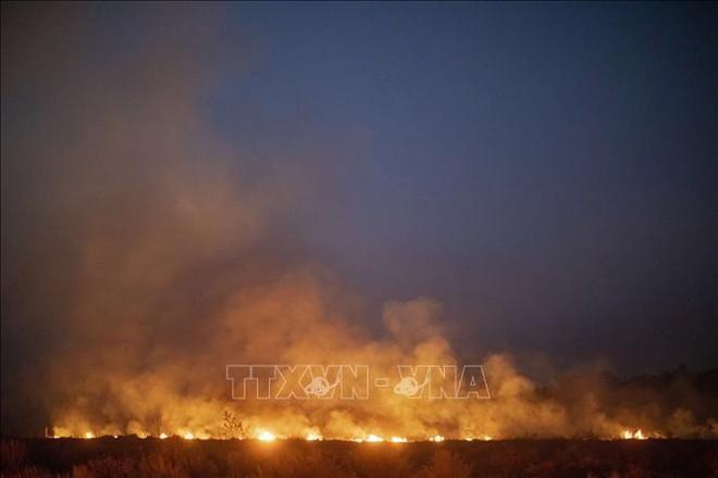 Cảnh báo cháy rừng Amazon có thể ảnh hưởng tới nhiệt độ toàn cầu - ảnh 1