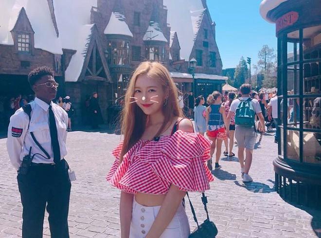 Chuỗi công viên giải trí này có gì mà cả Taeyeon, BLACKPINK, TWICE, MOMOLAND không hẹn mà tới? - ảnh 6