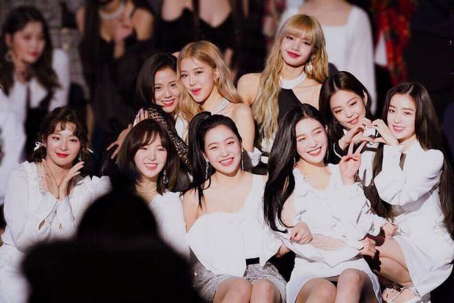 Chỉ vừa mới bình luận dạo khen nhau xinh, Jisoo (BLACKPINK) và Seulgi (Red Velvet) đã làm fan phát cuồng đòi collab gấp - ảnh 1