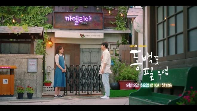 Cẩm nang dắt túi trước khi xem Khi Cây Trà Trổ Hoa của chị đẹp mê trai trẻ Gong Hyo Jin - Ảnh 2.