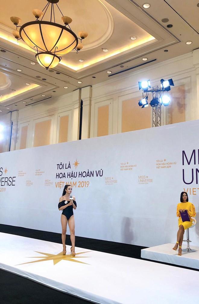 Dàn thí sinh Hoa hậu Hoàn vũ miền Bắc trong ảnh bikini chưa photoshop: Body Tường Linh, Đào Hà và mỹ nhân khác ra sao? - ảnh 4