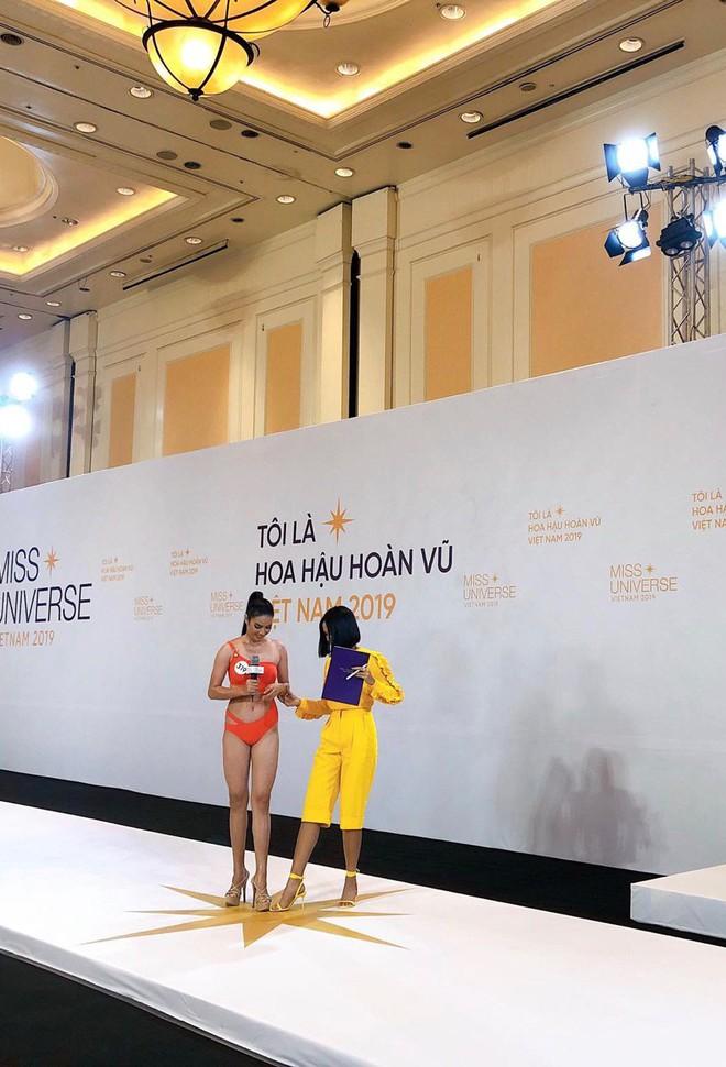 Dàn thí sinh Hoa hậu Hoàn vũ miền Bắc trong ảnh bikini chưa photoshop: Body Tường Linh, Đào Hà và mỹ nhân khác ra sao? - ảnh 2