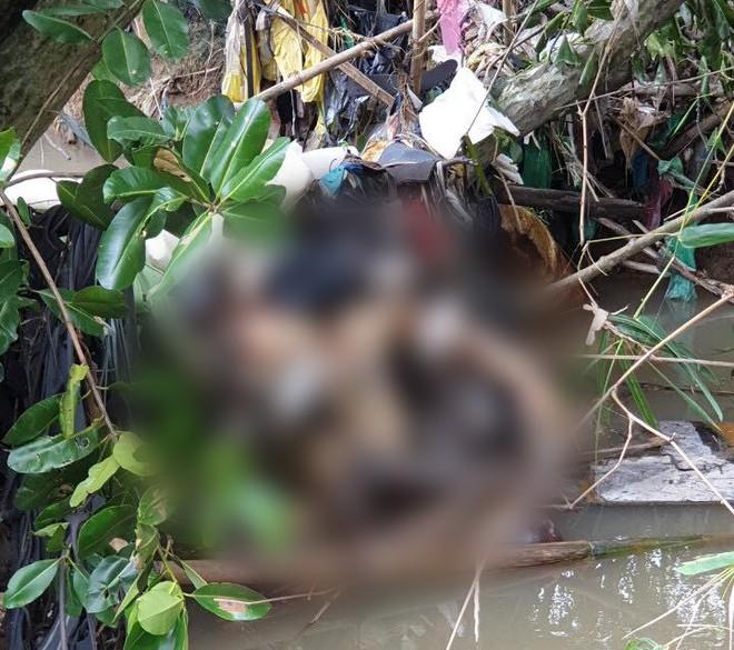 Bình Dương: Đi hái măng, người đàn ông hoảng hồn phát hiện cô gái tử vong trong tình trạng khoả thân dưới suối - ảnh 2