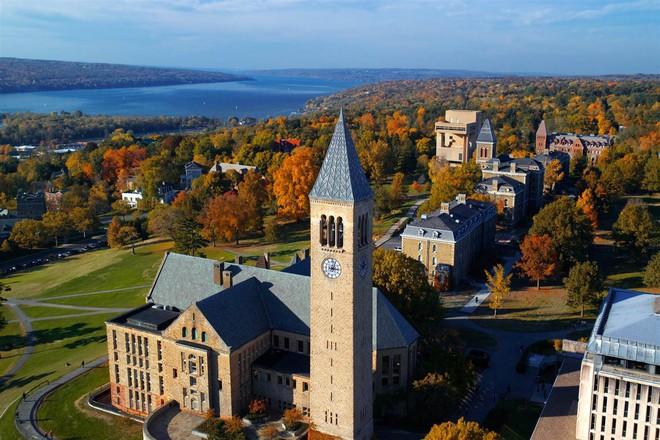 Lương của sinh viên Harvard mới ra trường đã lên đến 1.6 tỷ đồng nhưng vẫn thấp hơn nhiều trường khác trong khối Ivy League - Ảnh 6.