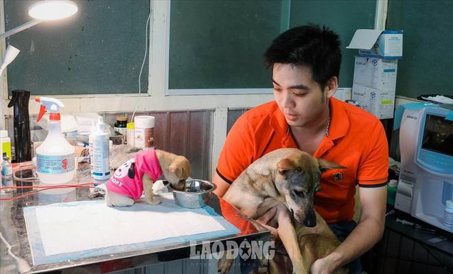 Thoát khỏi lò mổ, chú chó dũng cảm cứu sống đàn con trong bụng - ảnh 5