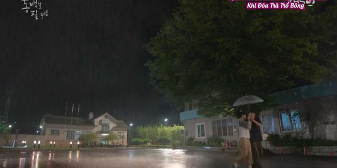 Cú lừa thế kỉ của Gong Hyo Jin (Khi Cây Trà Trổ Hoa): Dập người yêu cũ và crush bằng đứa con 6 tuổi - Ảnh 10.