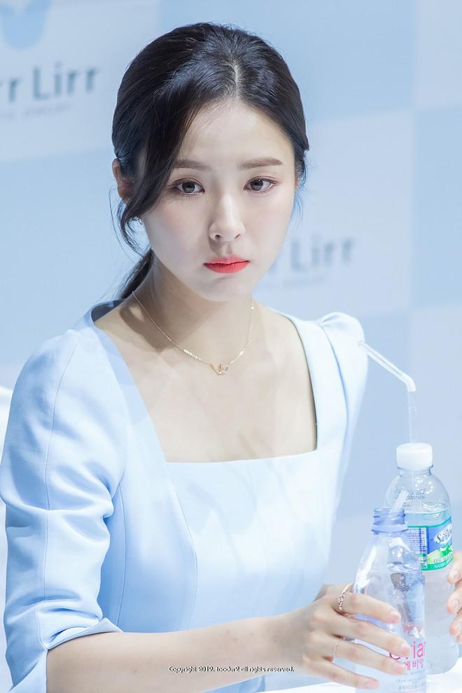Mỹ nhân mặt đơ Shin Se Kyung bỗng khiến netizen Việt-Hàn phát sốt vì nhan sắc: Không làm idol quá phí! - ảnh 3