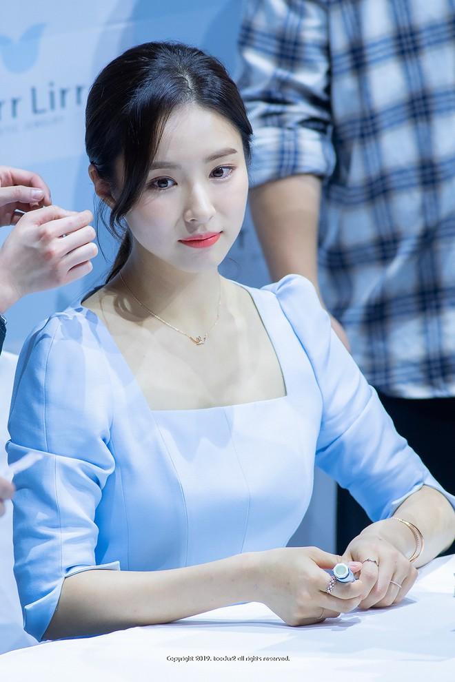 Mỹ nhân mặt đơ Shin Se Kyung bỗng khiến netizen Việt-Hàn phát sốt vì nhan sắc: Không làm idol quá phí! - ảnh 2
