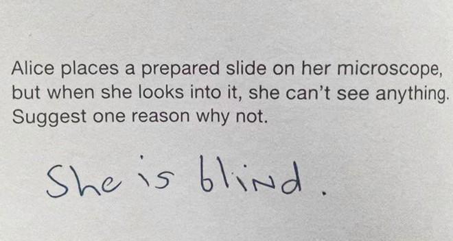Đừng đùa với trí khôn của bọn trẻ: Giáo viên hỏi một đằng chúng trả lời một nẻo, nghe vô lý nhưng lại rất thuyết phục - ảnh 8