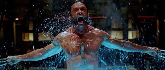 Khi hai kim loại mạnh nhất màn ảnh về chung nhà Marvel: Adamantium với Vibranium có gì khác biệt? - Ảnh 8.