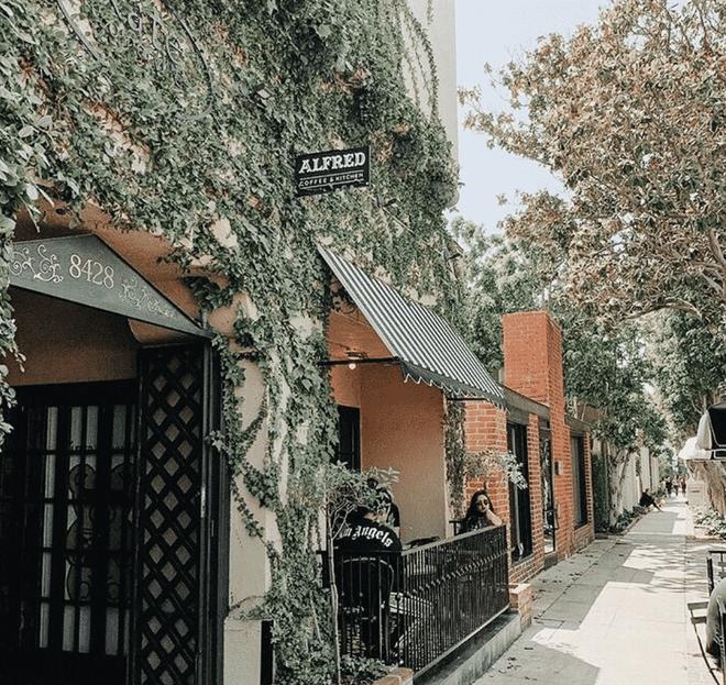 10 quán cà phê tuyệt nhất để đăng lên Instagram được báo nước ngoài lựa chọn, xuất hiện cả 1 quán ở Việt Nam ít ai ngờ tới - Ảnh 3.