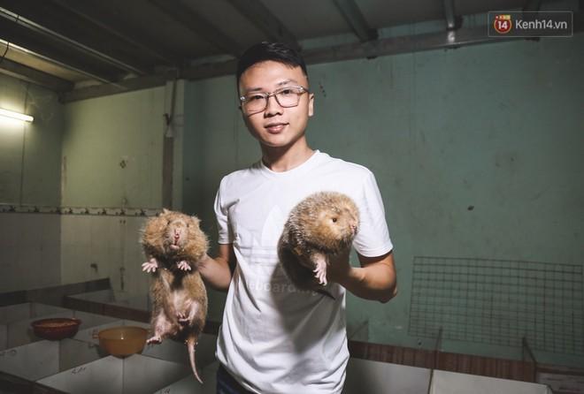 Chàng sinh viên Sài Gòn thu nhập 40 triệu đồng/tháng nhờ nuôi dúi bằng máy lạnh - ảnh 1