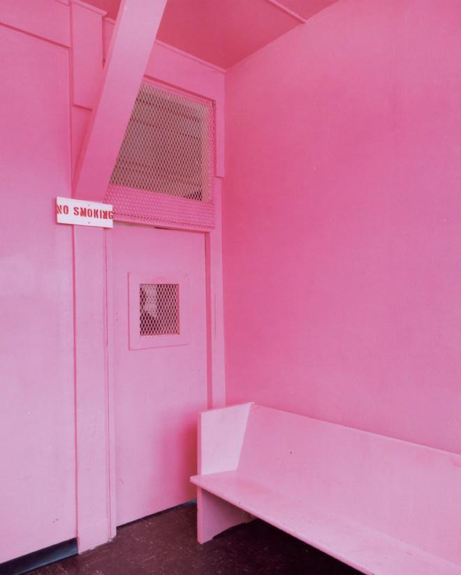 Nhà tù sơn màu hường phấn để giúp tù nhân bớt hung hãn, người trong cuộc chỉ thấy nhục nhã như bị phân biệt đối xử - ảnh 5