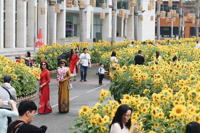 Phố nhà giàu Phú Mỹ Hưng đón Tết Canh Tý với đường hoa xuân đầy lúa và bắp ngô, tái hiện khung cảnh làng quê bình dị - ảnh 7