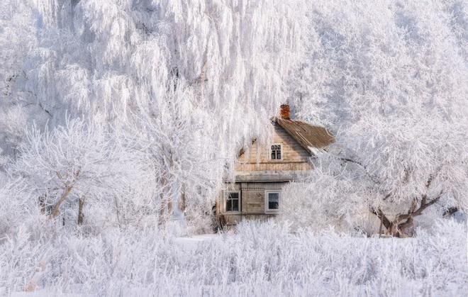 Chùm ảnh mùa đông băng tuyết trắng xóa phủ khắp vạn vật đẹp đến mê hồn, trông như khung cảnh trong truyện cổ tích - ảnh 4