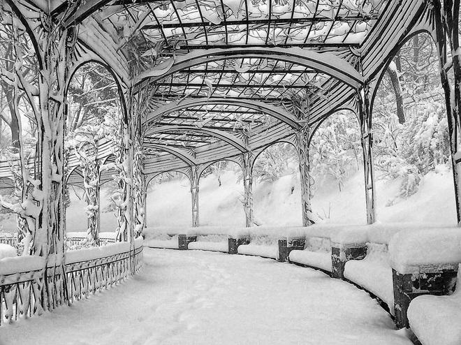 Chùm ảnh mùa đông băng tuyết trắng xóa phủ khắp vạn vật đẹp đến mê hồn, trông như khung cảnh trong truyện cổ tích - ảnh 10