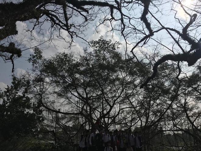 Pha chụp ảnh xấu không tưởng: Hào hứng nhờ chụp view đẹp, lớp học nhận cái kết đắng âm u như cô hồn đứng dưới bóng cây - ảnh 1