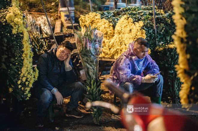 Những người nông dân chong lều canh đào, quất giữa cái lạnh 14 độ C của Hà Nội: Như đánh một canh bạc, bại nhiều hơn thắng - ảnh 10