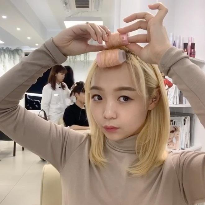 Tết này thà sống chung với lô cuốn như Lan Ngọc, Hari Won còn hơn kết thân với tóc bẹp dí - ảnh 8