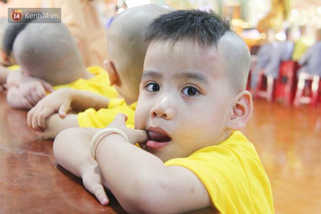 Cuộc sống hiện tại của 110 đứa trẻ bị bố mẹ bỏ rơi ở mái ấm Đức Quang sau khi bé Đức Lộc về với cửa Phật - ảnh 6