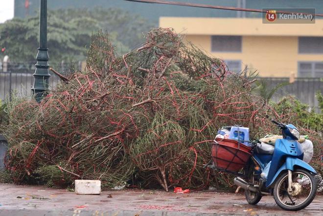 Hà Nội: Mưa gió chiều 30 Tết lại bị ép giá, người buôn đào quất quyết vặt trụi hoa quả và bỏ lại núi rác - ảnh 10