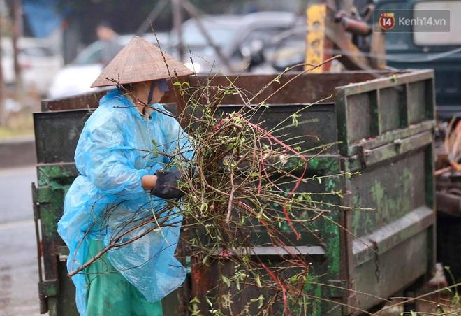 Hà Nội: Mưa gió chiều 30 Tết lại bị ép giá, người buôn đào quất quyết vặt trụi hoa quả và bỏ lại núi rác - ảnh 8