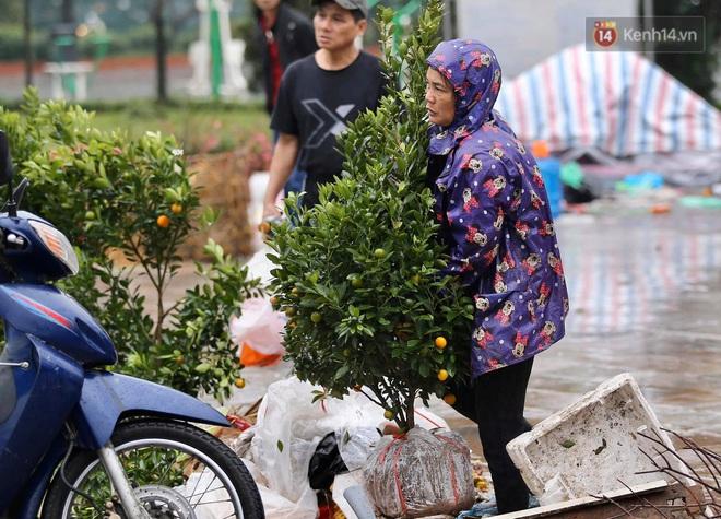 Hà Nội: Mưa gió chiều 30 Tết lại bị ép giá, người buôn đào quất quyết vặt trụi hoa quả và bỏ lại núi rác - ảnh 6