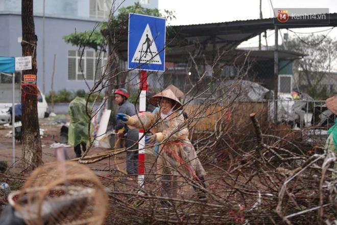 Hà Nội: Mưa gió chiều 30 Tết lại bị ép giá, người buôn đào quất quyết vặt trụi hoa quả và bỏ lại núi rác - ảnh 12