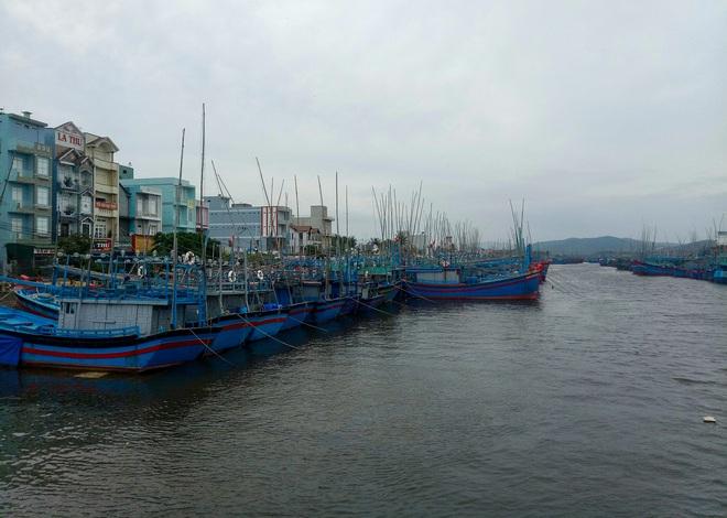 Ngư dân Bình Định tấp nập gia cố tàu thuyền tránh bão số 9 đang vào bờ - Ảnh 1.