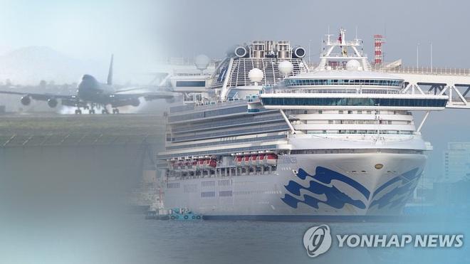 Hàn Quốc điều chuyên cơ Tổng thống tới Nhật Bản sơ tán công dân trên du thuyền Diamond Princess - ảnh 1