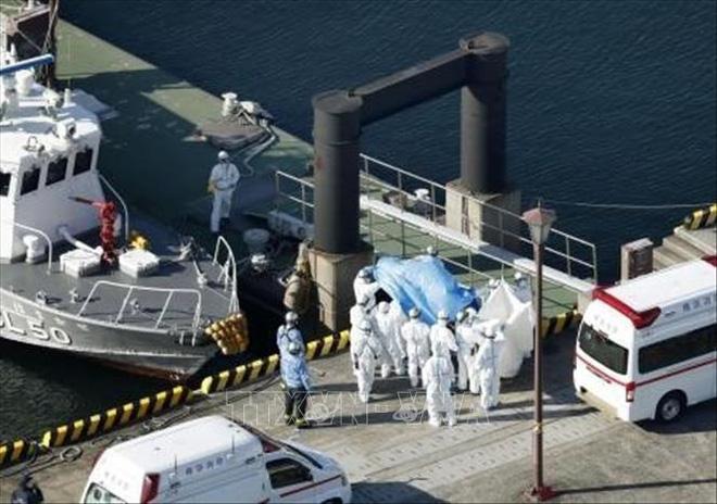 Ba thuyền viên Indonesia trên tàu Diamond Princess bị nhiễm COVID-19 - ảnh 1
