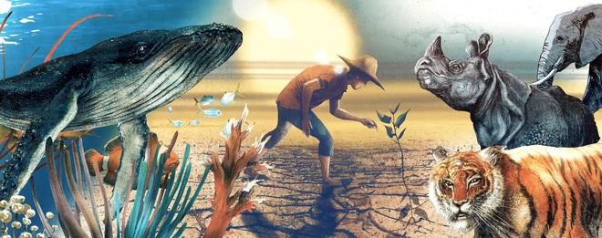 10 năm - chúng ta còn ngần ấy thời gian để phục hồi sự đa dạng sinh học trên Trái Đất trước khi đợt tuyệt chủng thứ 6 xảy ra! - Ảnh 2.