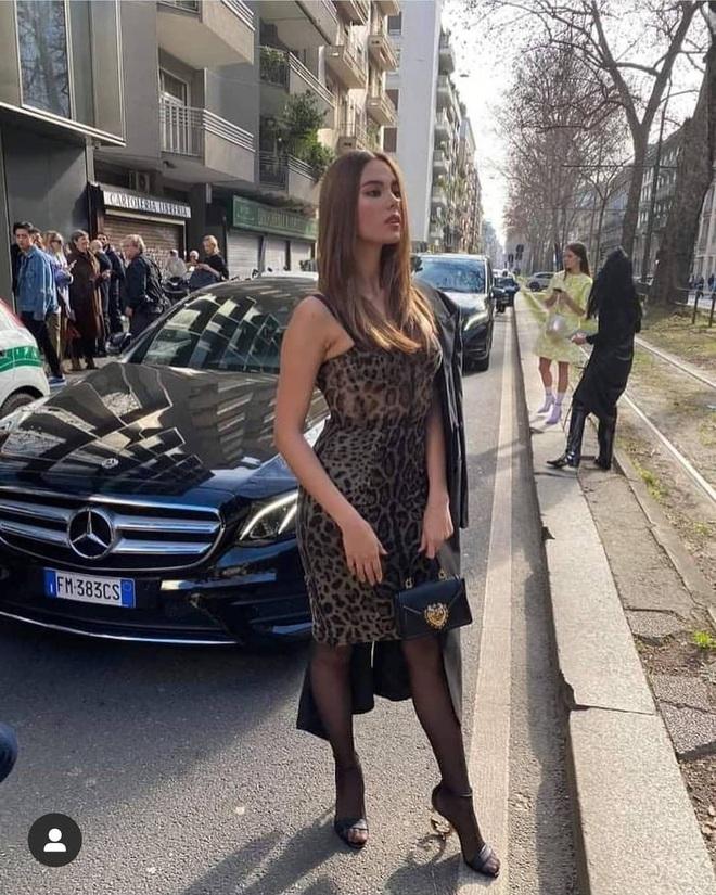 Pha đụng hàng tại trận: Catriona Gray diện đầm y hệt siêu mẫu Ý tại show Dolce & Gabbana, người an toàn người chất chơi - ảnh 1