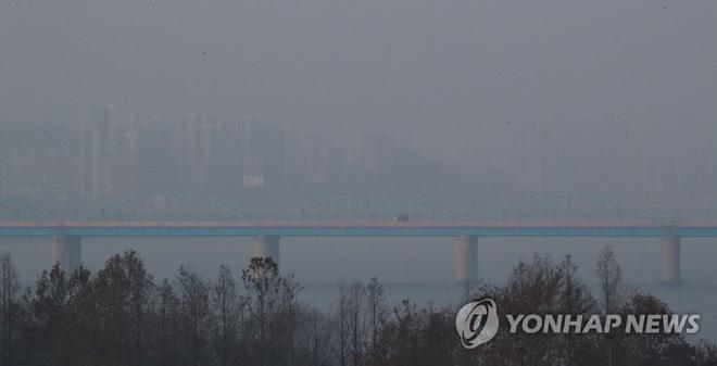 Quan chức Hàn Quốc phụ trách chống dịch virus corona nhảy sông tự tử - Ảnh 1.