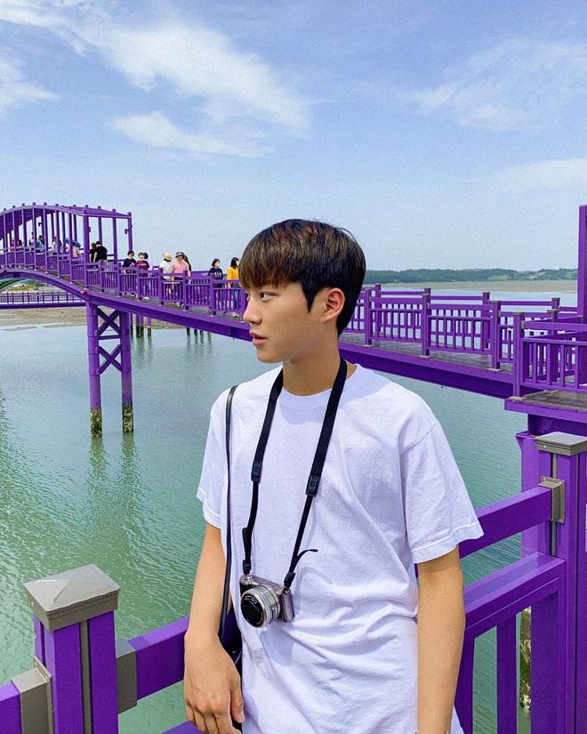 """Một hòn đảo kỳ lạ vừa xuất hiện ở Hàn Quốc đã tạo cơn bão check-in trên MXH: Tất cả mọi thứ đều nhuốm màu """"tím lịm tìm sim"""" - Ảnh 12."""