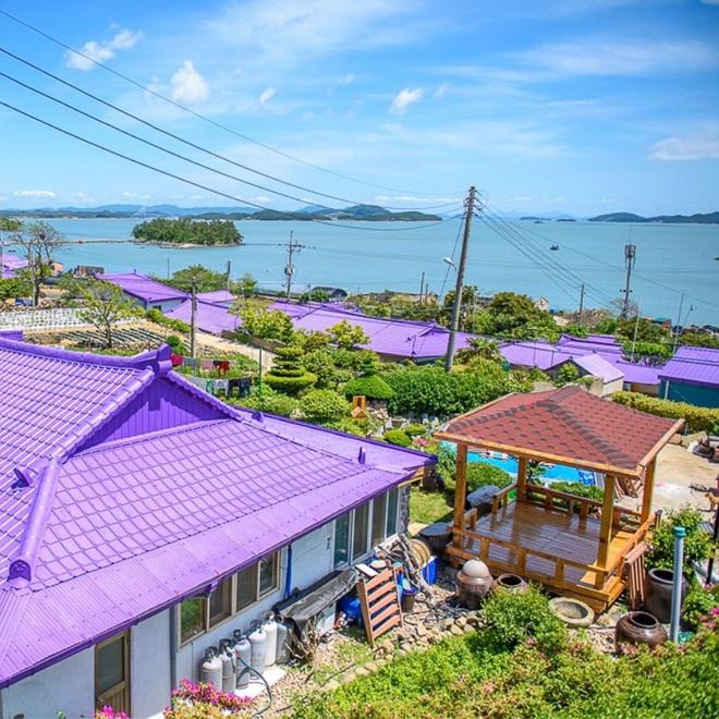 """Một hòn đảo kỳ lạ vừa xuất hiện ở Hàn Quốc đã tạo cơn bão check-in trên MXH: Tất cả mọi thứ đều nhuốm màu """"tím lịm tìm sim"""" - Ảnh 5."""