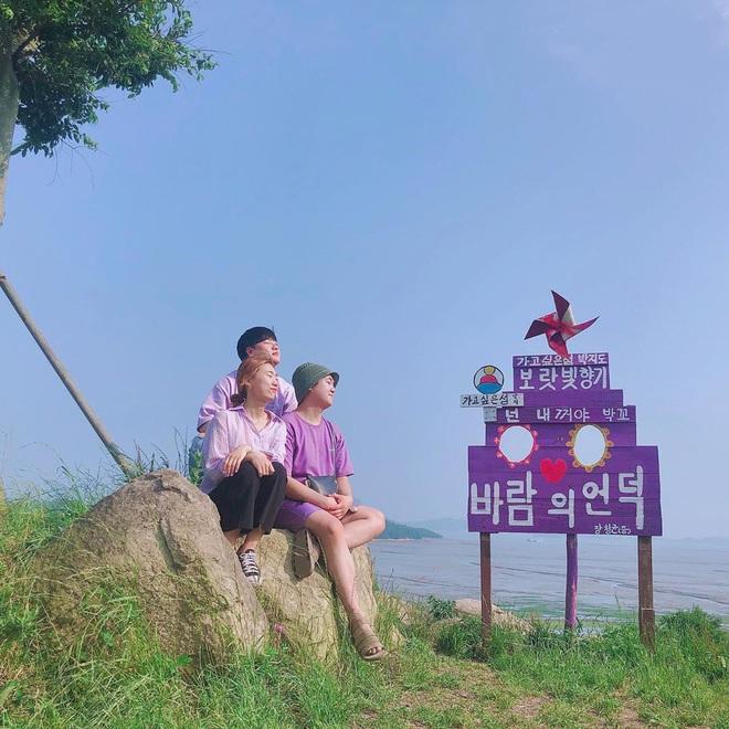 """Một hòn đảo kỳ lạ vừa xuất hiện ở Hàn Quốc đã tạo cơn bão check-in trên MXH: Tất cả mọi thứ đều nhuốm màu """"tím lịm tìm sim"""" - Ảnh 23."""