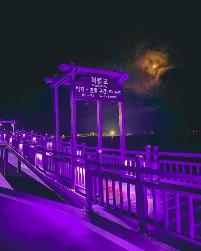 """Một hòn đảo kỳ lạ vừa xuất hiện ở Hàn Quốc đã tạo cơn bão check-in trên MXH: Tất cả mọi thứ đều nhuốm màu """"tím lịm tìm sim"""" - Ảnh 18."""