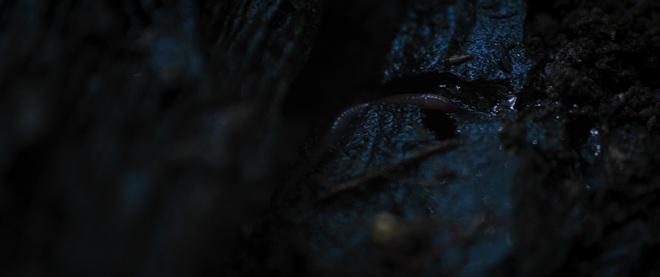 Nổi da gà với teaser trailer 2 của Tà Năng Phan Dũng: Khi kẻ đi lạc tuyệt vọng tìm tới cái chết? - Ảnh 10.